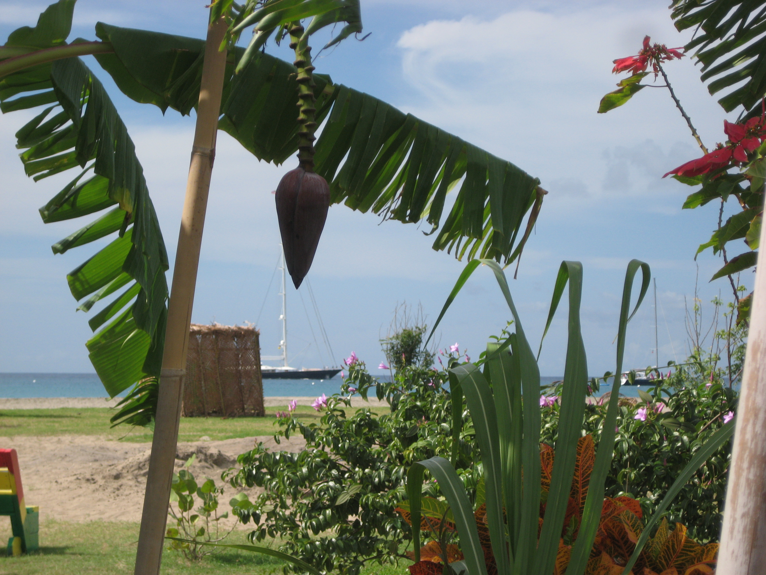 Chef in my own mind - Nevis where the livin\' is easy